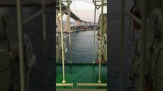 Princess cruise leaving Busan South Korea