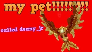 MM2 my pet!!!!!!!!! [ murder mystery 2 ]