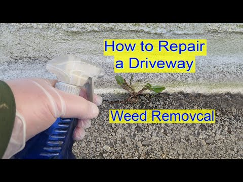 How to Repair Driveway - Weed Removal