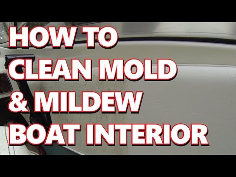 How To Boat/Marine:  Easy clean mold mildew from vinyl boat interior