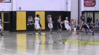 PIAA AA Girls Basketball Semifinals SL vs. Burrell 3/18/14