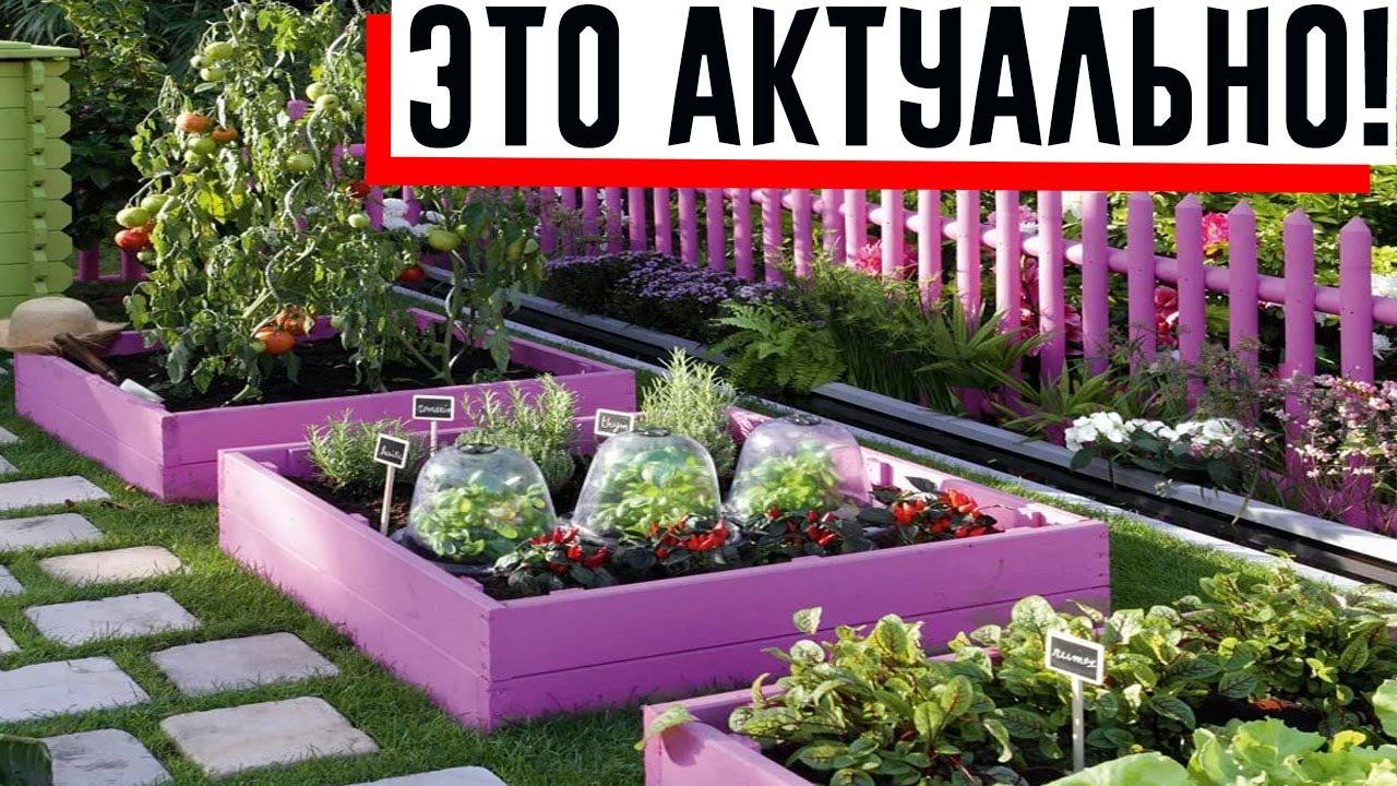 Сад своими руками: полезные лайфхаки для дачников!