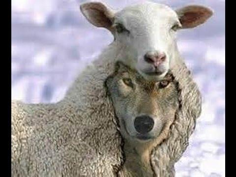 Jack Van Impe exposes Rick Warren false teaching purpose driven life Emerging church last days news
