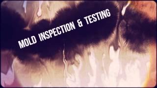 Mold Remediation Phoenix AZ (602) 459-9388 - Emergency Mold Removal