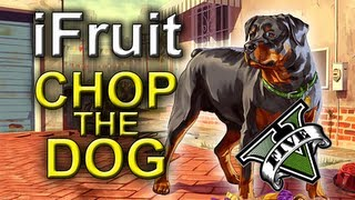 Ifruit App - Chop The Dog : Grand Theft Auto 5 - Iphone