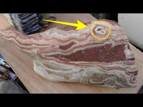 Miếng thịt lợn ba chỉ có giá 4,5 tỉ đồng - Anh nông dân ngất lịm