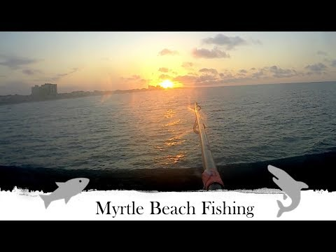 Myrtle Beach Fishing (Surf And Pier)