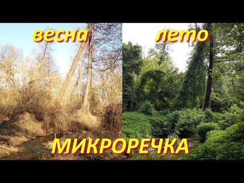 МИКРОРЕЧКА ВЕСНОЙ 23/03/2020 и летом 05/2019 Ультралайтовая рыбалка