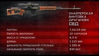 Отечественное стрелковое оружие. Снайперское оружие.