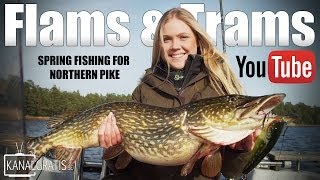 Flams & Trams | Spring Fishing for Northern Pike - Kanalgratis.se