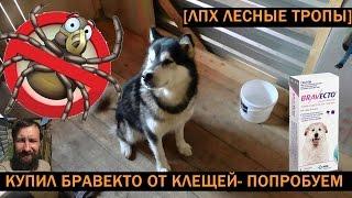 Бравекто для собак - защита на 3 месяца(, 2017-05-15T10:53:56.000Z)