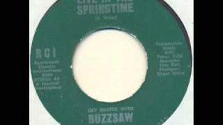 Buzzsaw - Live in the springtime (garage psych)