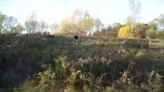 Canatara Bike Jumps