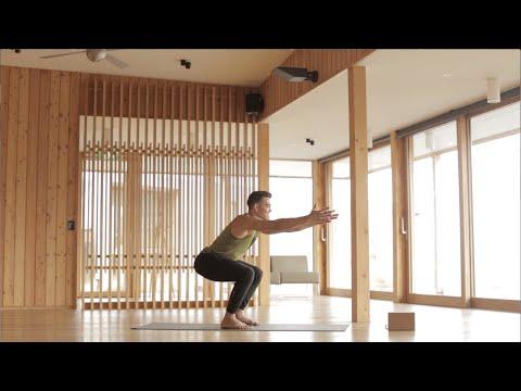 Dustin Brown's 60 Min Vinyasa Flow (Intermediate) at Aro Ha Wellness Retreat in New Zealand