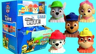 Huge 40 Paw Patrol Micro Lite FULL CASE Collection of Mashems Fashems Toys Chase Rubble Rocky Skye