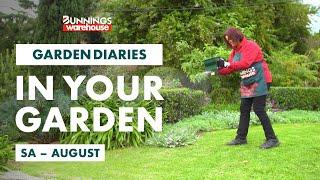 Gardening in August   SA   Bunnings Garden Diary