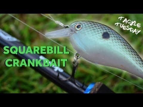 squarebill-crankbait-fishing-tips-!-(tackle-tuesday-#1)