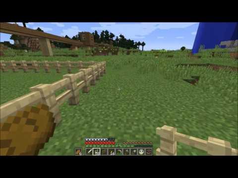 Minecraft 297 Zauntore