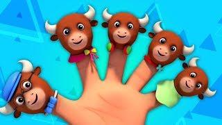 быки палец семья | Рифмы для детей | Детская музыка | Bulls Finger Family Rhyme