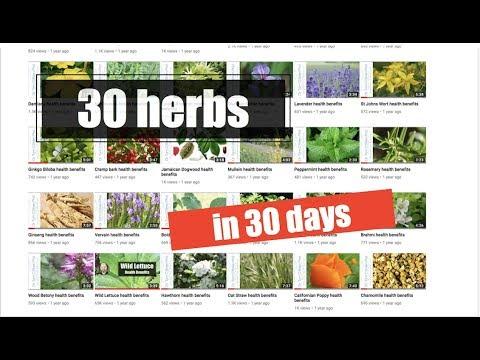 30 Herbs for better mental health