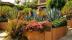Ventura Landscaping Contractor Doug Halter Landscape 805-701-2485