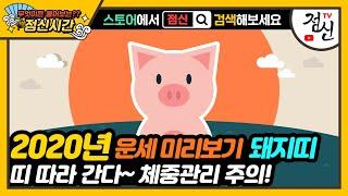 [띠별 신년운세] 2020년 돼지띠 운세 - 체중관리 주의! 잘못하면 띠 따라 돼지된다?