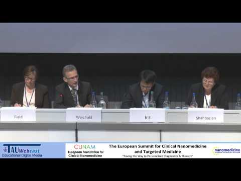 Panel - The Regulation Environment in Nanomedicine and Targeted Medicine