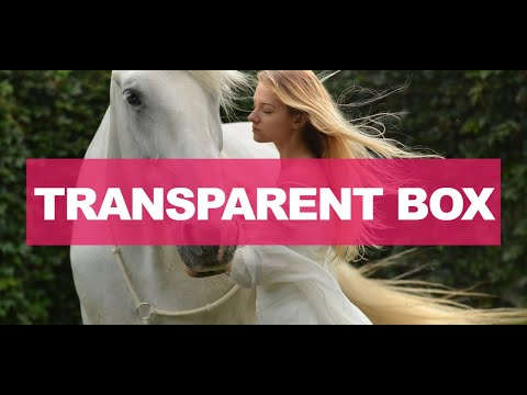 Transparent Text On Image | How To Add Transparent Background Image HTML | Smart Webtuts | 2020