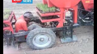 The Chamwada Report: The State of rice farming in Kenya Part 2 10/16/2016