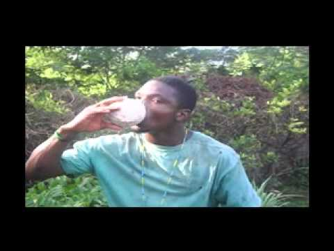 Jamaican Man Peels Coconut with Teethwmv