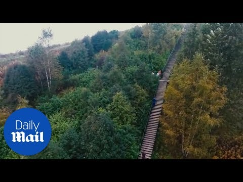 World's fastest stair climb in Helsinki, Finland - Daily Mai