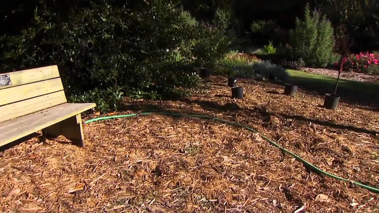 Garden Path Design - YouTube