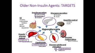 2016 update on the newer diabetes drugs wow has the list expanded