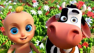 La Vaca Lola, Los Pollitos y Las Mejores Canciones Infantiles | LooLoo