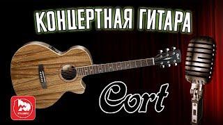 CORT SFX DAO   доступная электроакустическая гитара