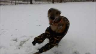 Remix Mosely in the snow with Batman theme tune