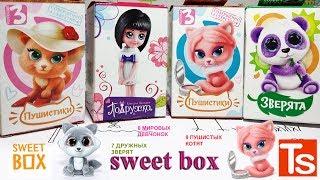 СВИТ БОКС МИКС Коробочки-СЮРПРИЗЫ: Зверята, Пушистики3, Пдружки. Sweet Box MIX