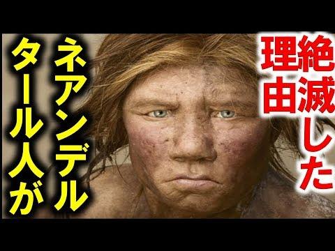 ネアンデルタール人絶滅原因は異...