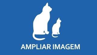 Como ampliar sua imagem e manter a qualidade no Photoshop | Pixel Tutoriais