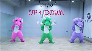 EXID(이엑스아이디) '위아래' (UP&DOWN)  | 커버댄스 Dance Cover By  Cro…