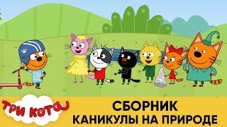 Три Кота Сборник Каникулы на природе Мультфильмы для детей