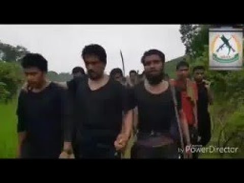 Rohingya insurgency declares 'open war' in Myanmar