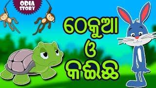 ଠେକୁଆ ଓ କଇଁଛ - The Hare and The Tortoise in Odia | Odia Story | Fairy Tales in Odia | Koo Koo TV