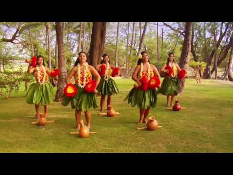 Beautiful Hula / Polynesian Dancers