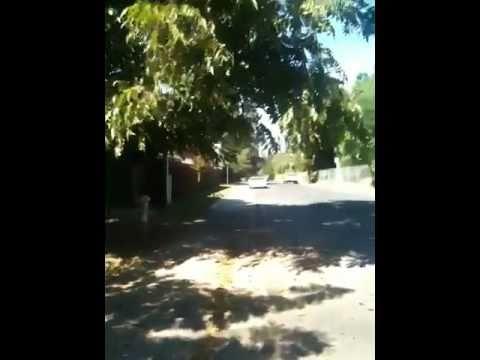 Bike Free in California - Sunny Sacramento