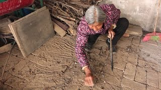 农村婆媳炸丸子 80岁婆婆意外发现小动物 超开心说乖乖这个大