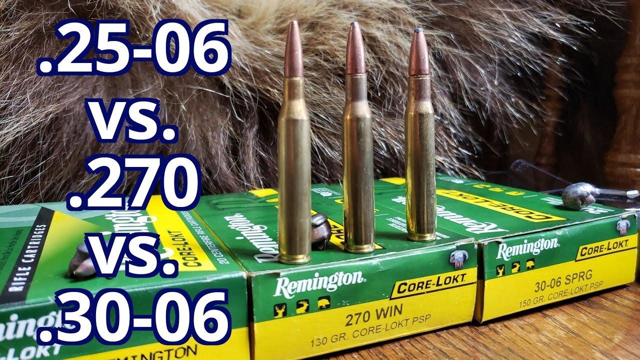 .25-06 rem vs. .270 win vs. .30-06 Spfld Remington Core-lokt Pork and Water Jugs Test