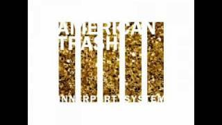 Innerpartysystem - American trash