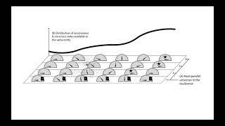 Many Minds Interpretation of Consciousness