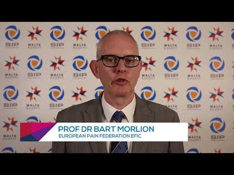 SIP 2017 - Presentation and Statement - Societal Impact of Pain (SIP)